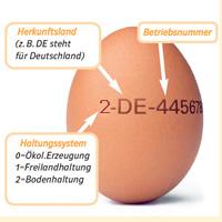 Code Auf Eiern Entschlüsseln